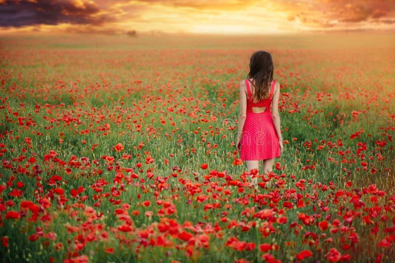 Bella donna in un vestito rosso in un campo del papavero al tramonto dalla tonalità posteriore e calda, dalla felicità e da uno s fotografia stock