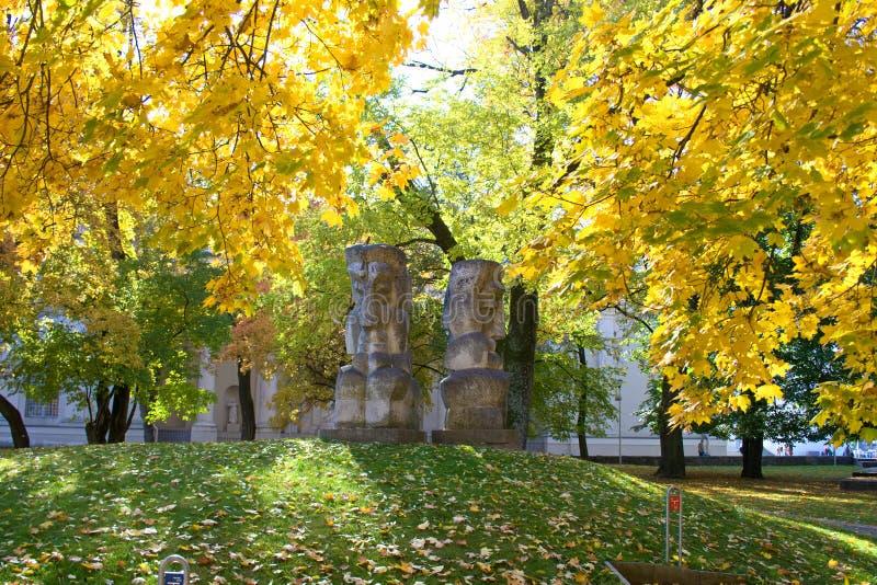 Bella foresta variopinta degli alberi in autunno fotografia stock libera da diritti