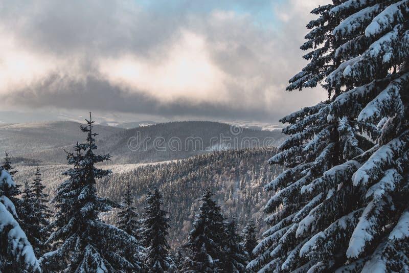 Bella foschia delle montagne di inverno di mattina fotografie stock libere da diritti