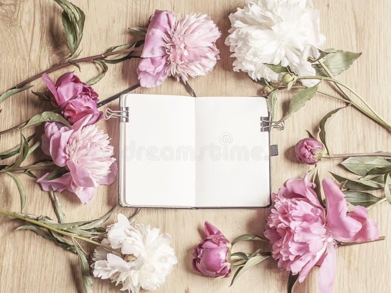 Bella foto vaga del modello di un taccuino aperto e dei fiori rosa della peonia fotografie stock