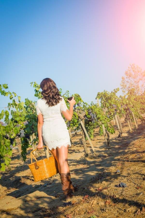 Bella giovane donna adulta che gode dell'assaggio del bicchiere di vino che cammina nella vigna dell'uva fotografia stock libera da diritti