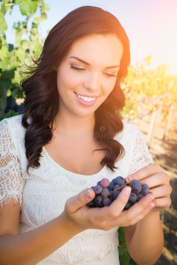 Bella giovane donna adulta che gode di una passeggiata in una vigna dell'uva fotografia stock libera da diritti