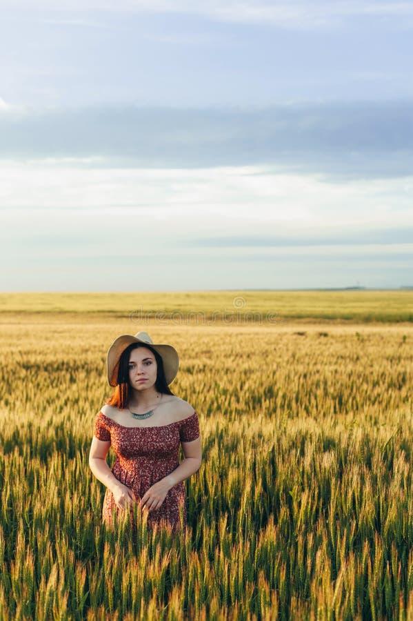 Bella giovane donna al tramonto nel campo immagini stock libere da diritti