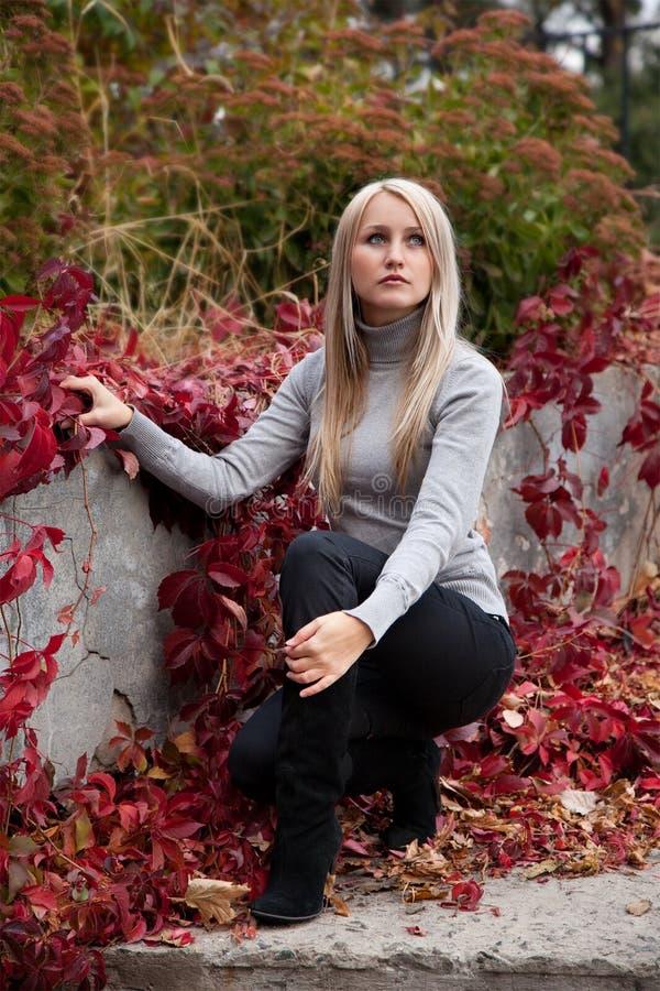 Bella giovane donna in autunno fotografie stock libere da diritti