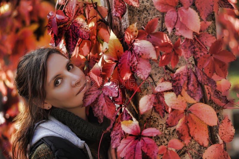Bella giovane donna castana in autunno fotografia stock