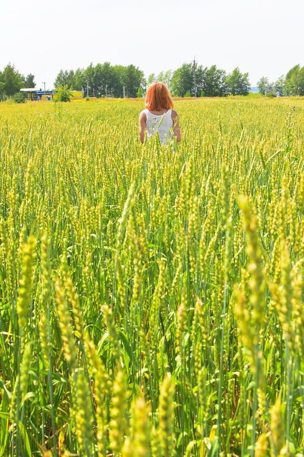 Bella giovane donna che cammina al campo di frumento immagine stock