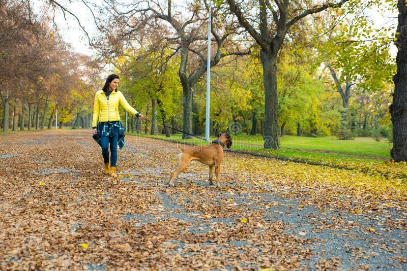 Bella giovane donna con il suo cane nel parco immagini stock libere da diritti