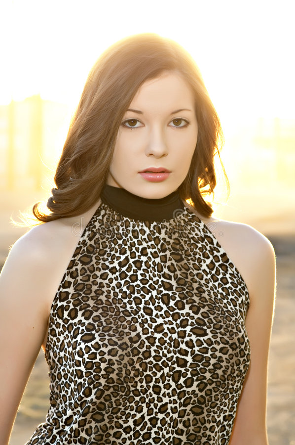 Download Bella Giovane Donna Nella Parte Superiore Della Stampa Del Leopardo Fotografia Stock - Immagine di serio, trucco: 7316800