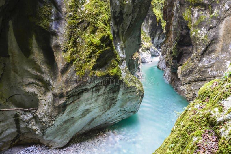 Bella gola di Tolmino, Slovenia fotografia stock