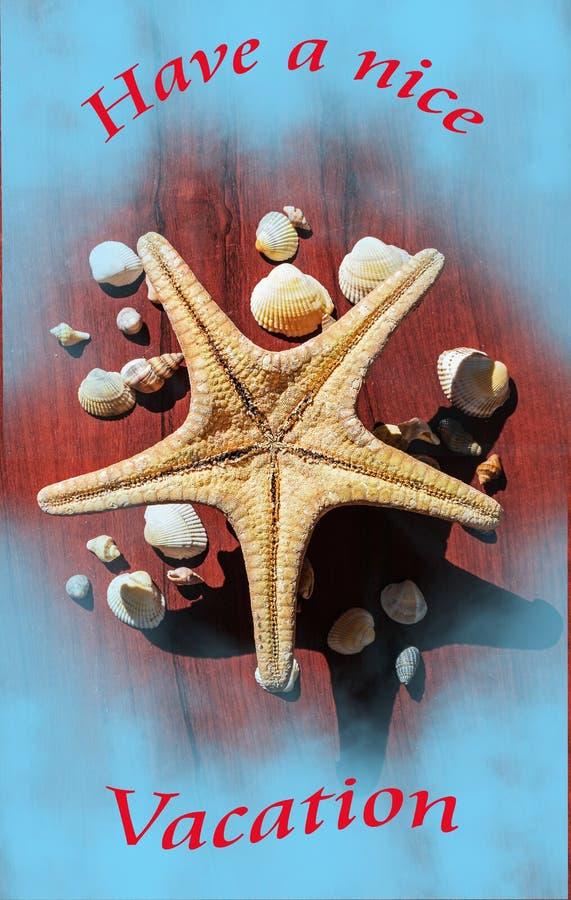 Bella immagine con una grande stella di mare circondata da molte coperture Stelle marine su fondo di legno Elementi del mare e de fotografia stock