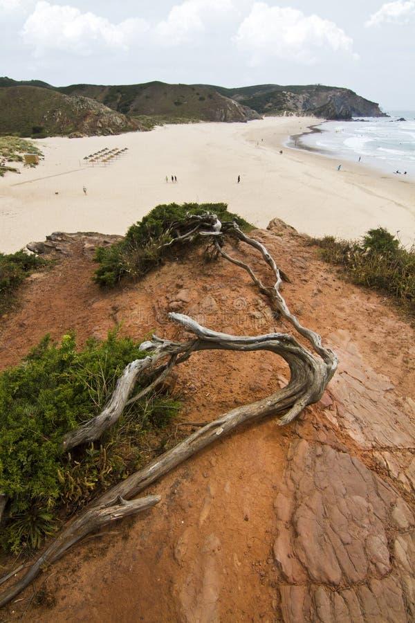 Bella linea costiera di Sagres fotografia stock libera da diritti