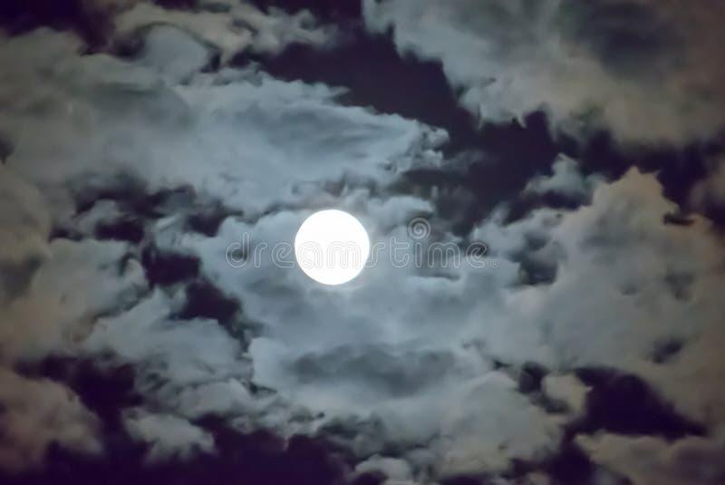 Bella luna piena e fondo bianco nei precedenti di mezzanotte del cielo, luce della luna del cielo nuvoloso sulla notte di Hallowe immagine stock