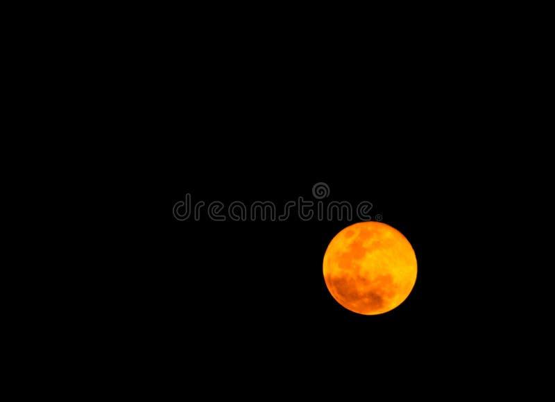 Bella luna piena nella notte scura, luce della luna sulla notte di Halloween, cielo scuro senza la stella fotografia stock