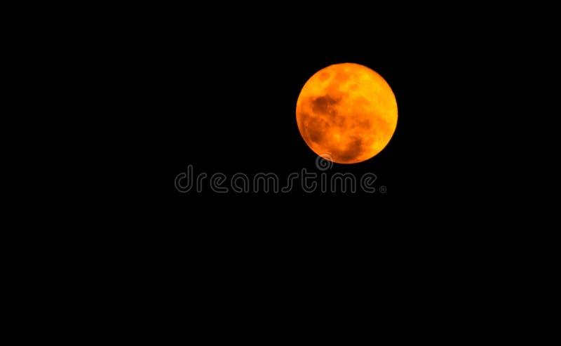 Bella luna piena nella notte scura, luce della luna sulla notte di Halloween, cielo scuro senza la stella immagine stock libera da diritti