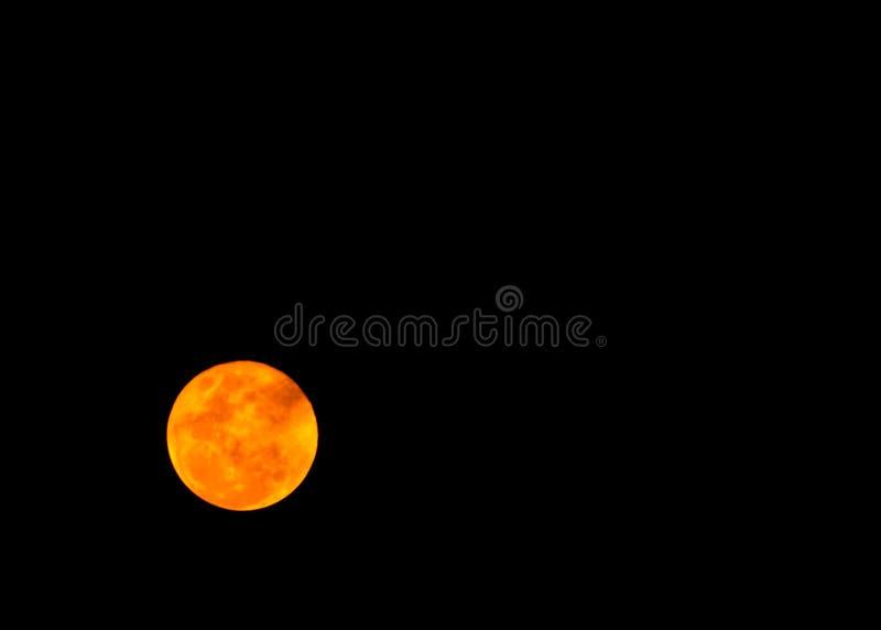 Bella luna piena nella notte scura, luce della luna sulla notte senza la stella, sembrare di Halloween spaventata e sola fotografie stock libere da diritti