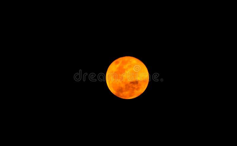 Bella luna piena nella notte scura, luce della luna sulla notte senza la stella, sembrare di Halloween spaventata e sola immagine stock libera da diritti