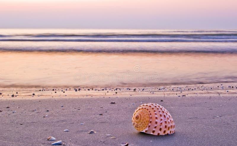 Bella mattina della spiaggia fotografia stock