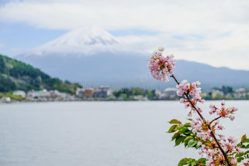 Bella montagna di Fuji, il punto di riferimento famoso del Giappone immagini stock libere da diritti