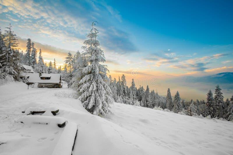 Bella montagne contenute di alba di inverno foto immagine stock