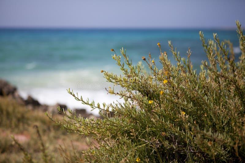 Bella natura dal mare fotografie stock