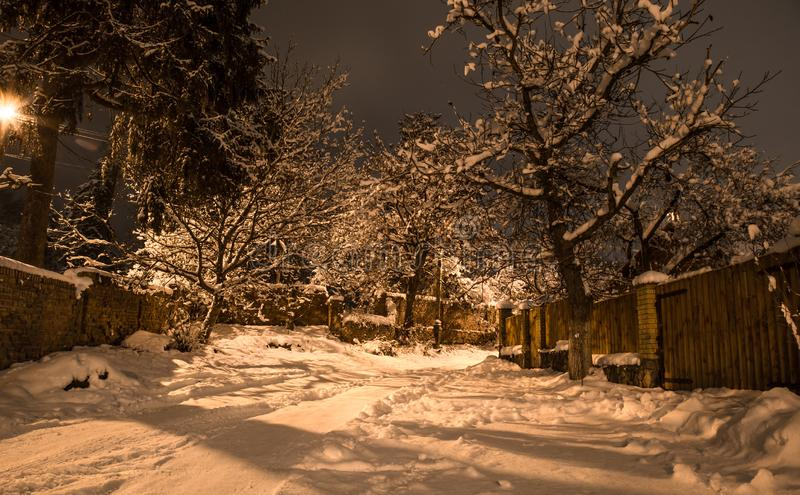 Bella notte di inverno della neve sulla campagna Vista della via con neve sugli alberi fotografia stock