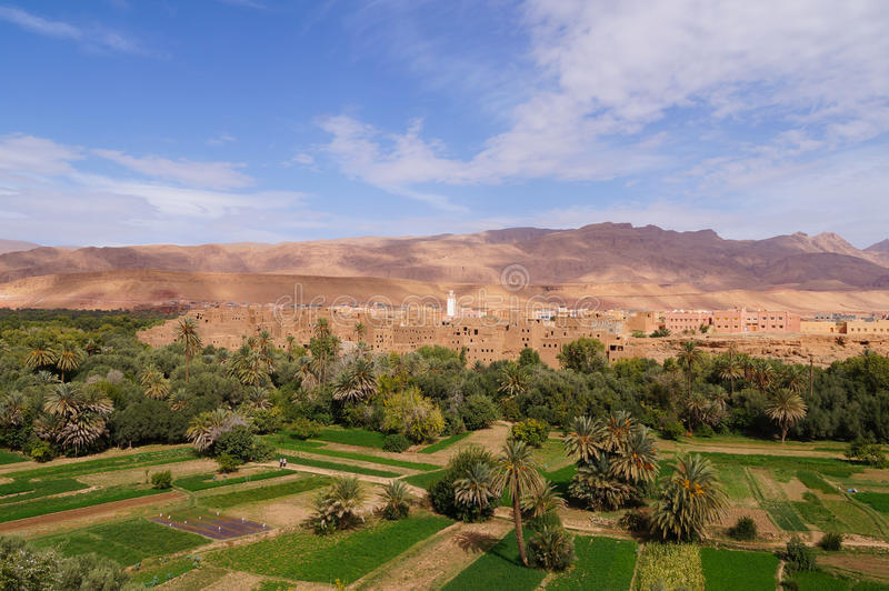 Bella oasi in Tineghir, Marocco immagini stock libere da diritti