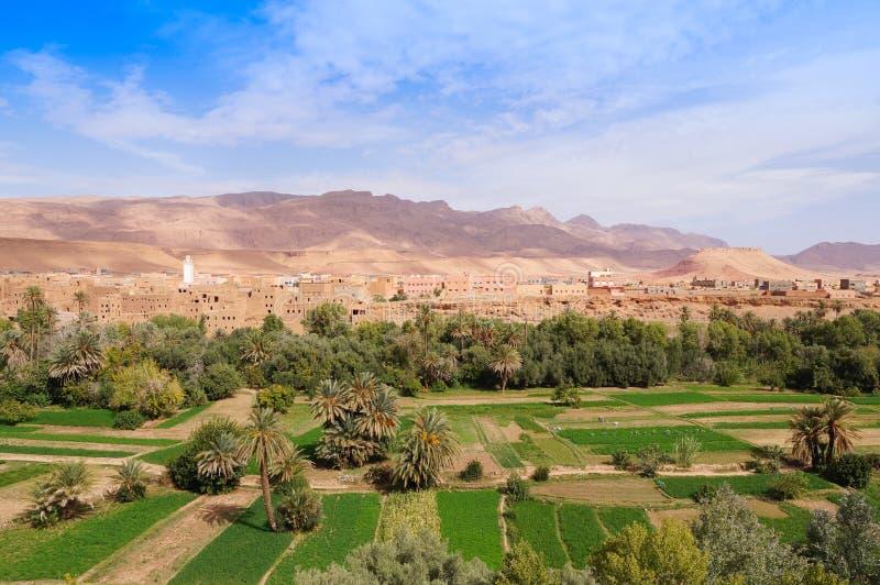 Bella oasi in Tineghir, Marocco fotografia stock