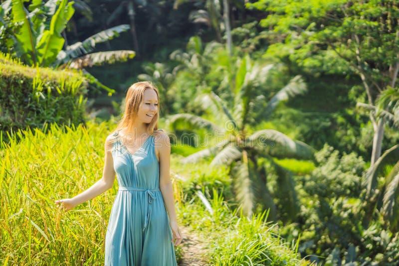 Bella passeggiata della giovane donna al pendio di collina asiatico tipico con riso che coltiva, terrazzi del giacimento del riso immagine stock