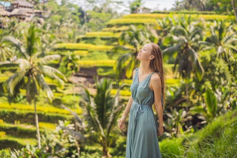 Bella passeggiata della giovane donna al pendio di collina asiatico tipico con riso che coltiva, terrazzi del giacimento del riso immagine stock libera da diritti