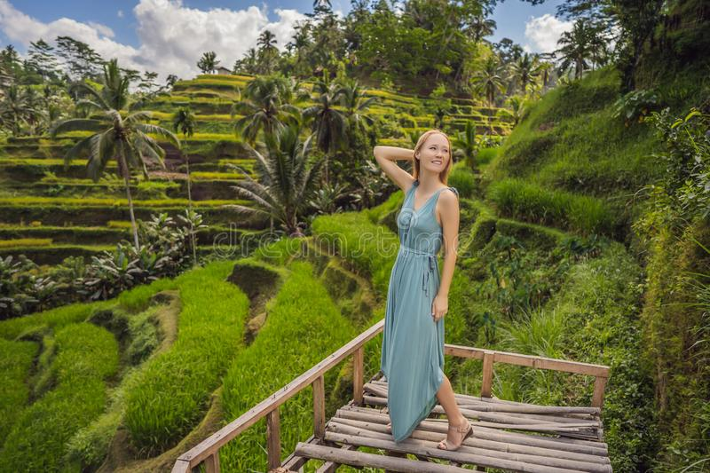 Bella passeggiata della giovane donna al pendio di collina asiatico tipico con riso che coltiva, terrazzi del giacimento del riso fotografie stock libere da diritti