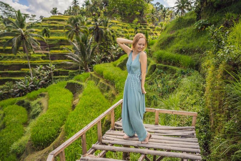 Bella passeggiata della giovane donna al pendio di collina asiatico tipico con riso che coltiva, terrazzi del giacimento del riso fotografie stock