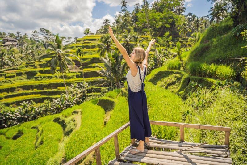 Bella passeggiata della giovane donna al pendio di collina asiatico tipico con riso che coltiva, terrazzi del giacimento del riso immagini stock