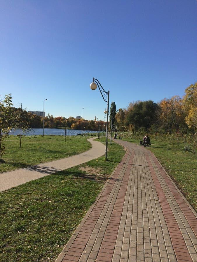 Bella passeggiata nel parco soleggiato di autunno immagine stock