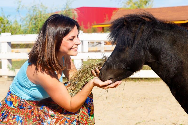 Bella ragazza che alimenta il cavallino della paglia sull'azienda agricola immagine stock libera da diritti