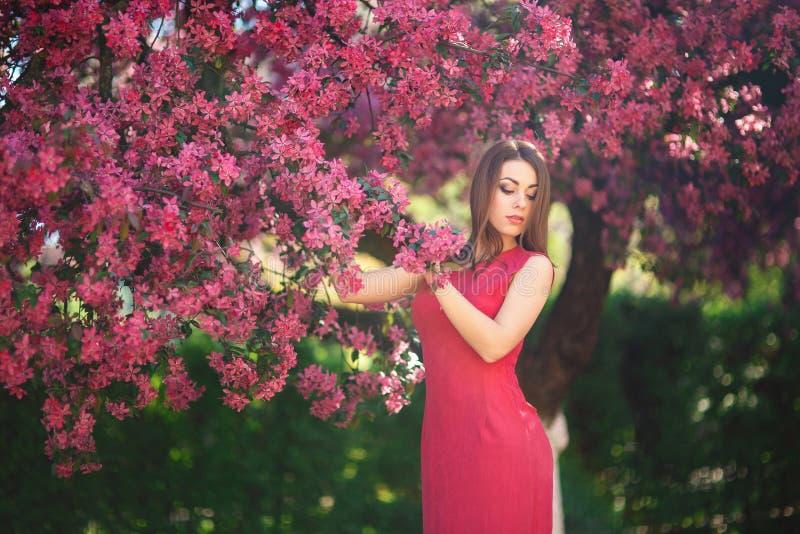 Bella ragazza che posa al fotografo contro lo sfondo degli alberi rosa di fioritura Sorgente Sakura immagini stock