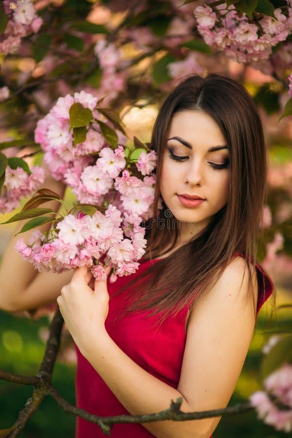 Bella ragazza che posa al fotografo contro lo sfondo degli alberi rosa di fioritura Sorgente Sakura fotografia stock libera da diritti