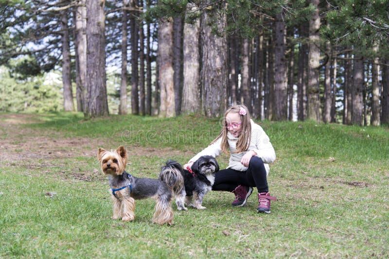 Bella ragazza che sorride al parco con i cani immagine stock