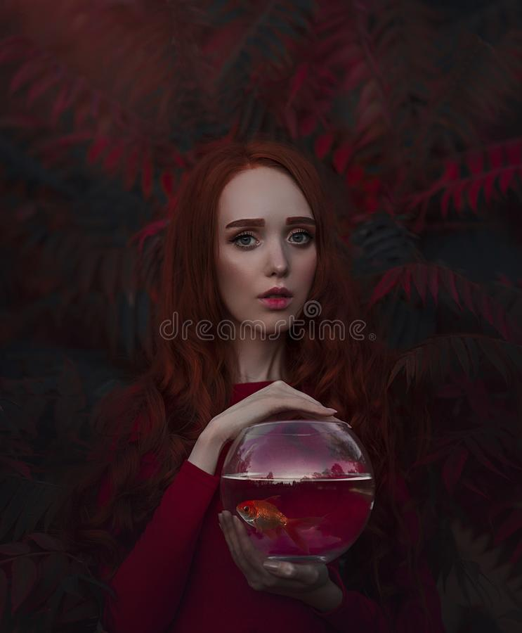 Bella ragazza con capelli rossi lunghi con un pesce rosso nell'acquario Ritratto di giovane donna dai capelli rossi in autunno fotografie stock