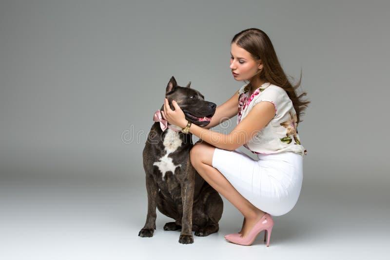 Bella ragazza con il terrier grigio di stafford immagine stock libera da diritti
