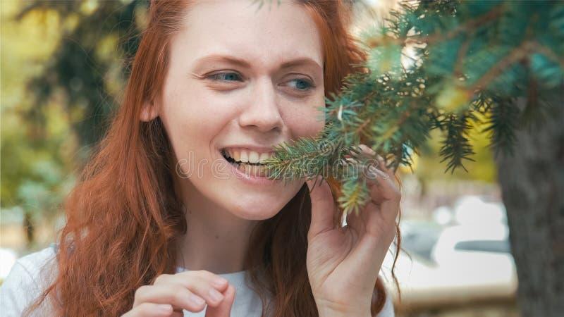 Bella ragazza del vegano della testarossa che mangia gli aghi del pino immagine stock libera da diritti