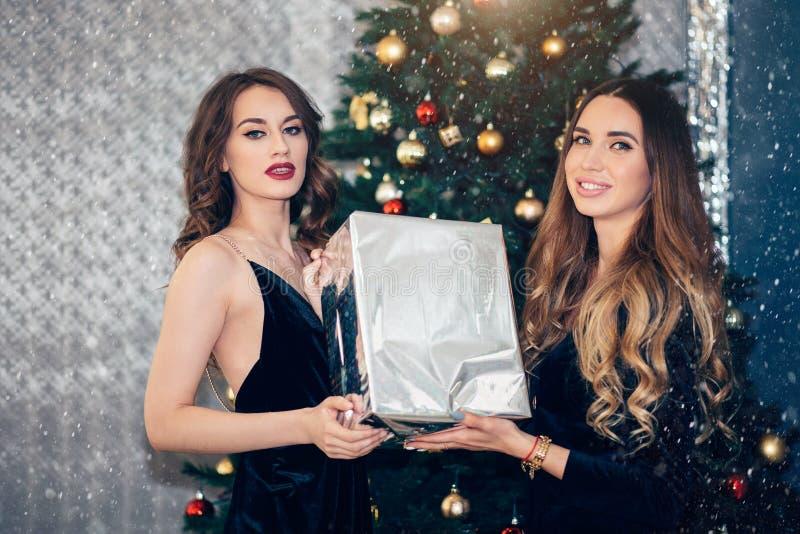 Bella ragazza due con il contenitore di regalo vicino all'albero di Natale che guarda con un sorriso immagine stock libera da diritti