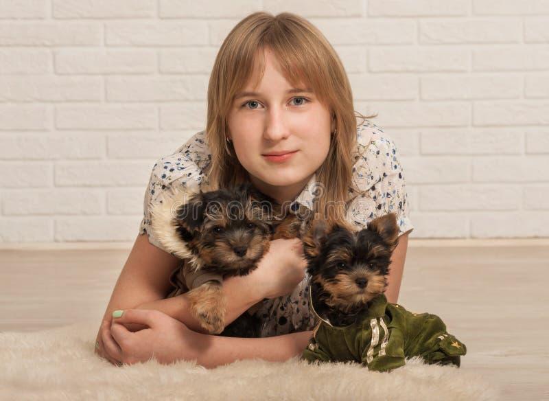Bella ragazza e due cani fotografia stock