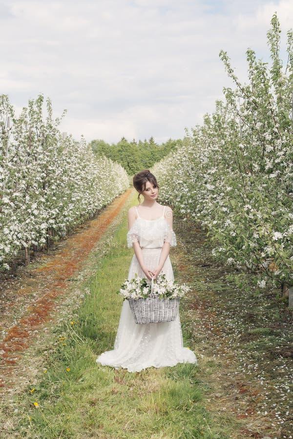 Bella ragazza felice delicata dolce in un vestito beige dal boudoir con i fiori in una tenuta del canestro, foto che elabora nell immagini stock libere da diritti