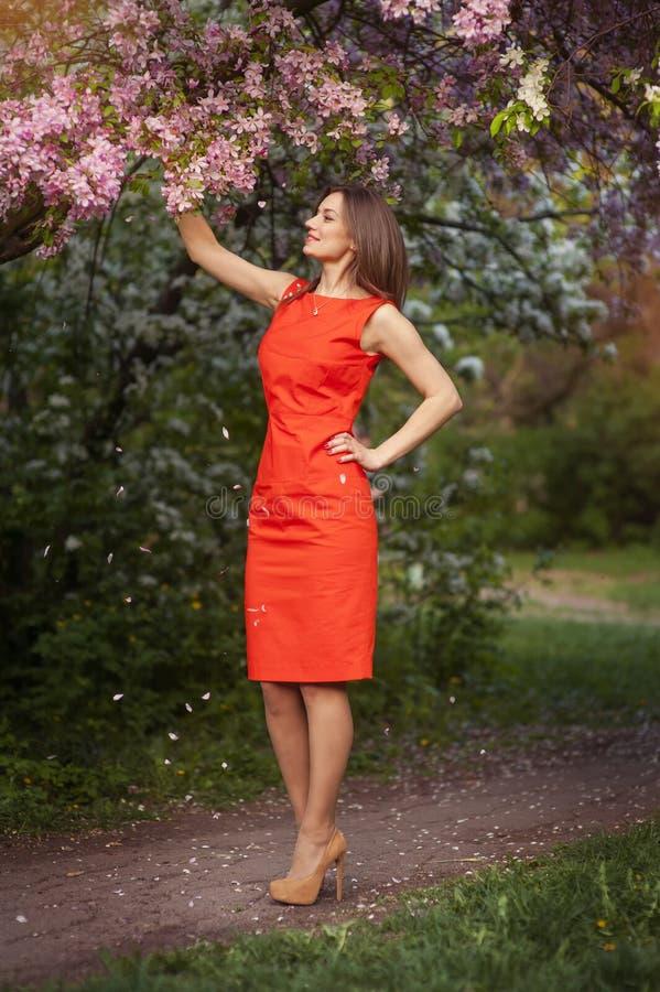Bella ragazza nel giardino di primavera immagine stock