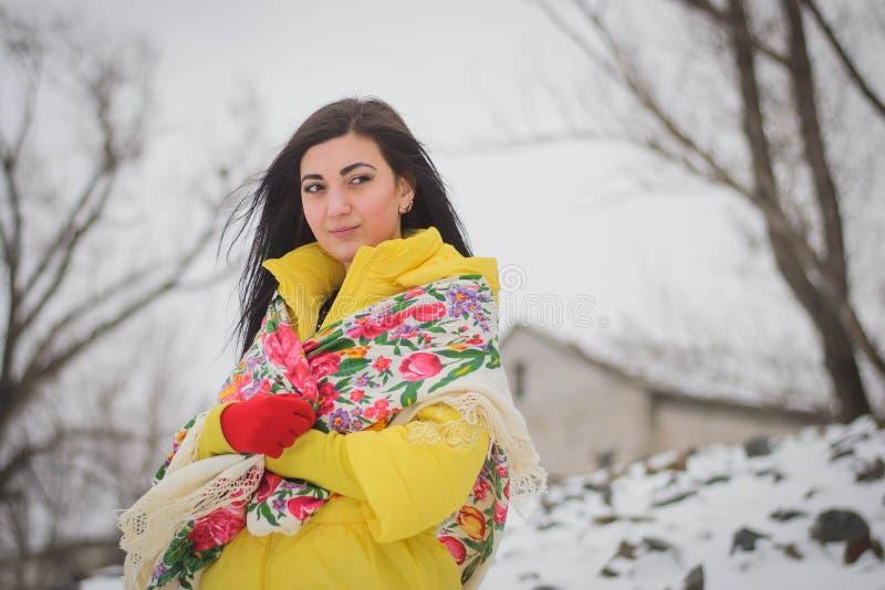 Bella ragazza nell'inverno fotografia stock libera da diritti