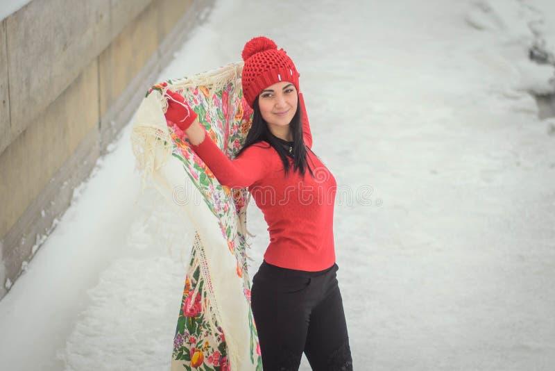 Bella ragazza nell'inverno fotografia stock