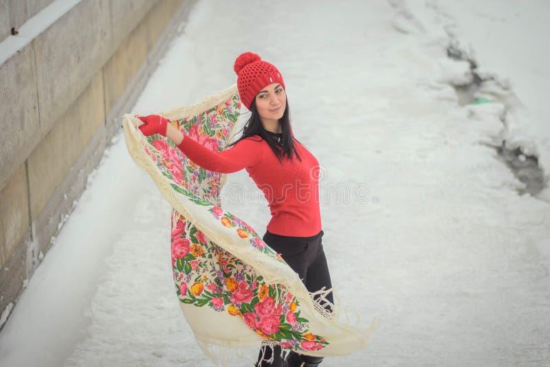 Bella ragazza nell'inverno immagine stock