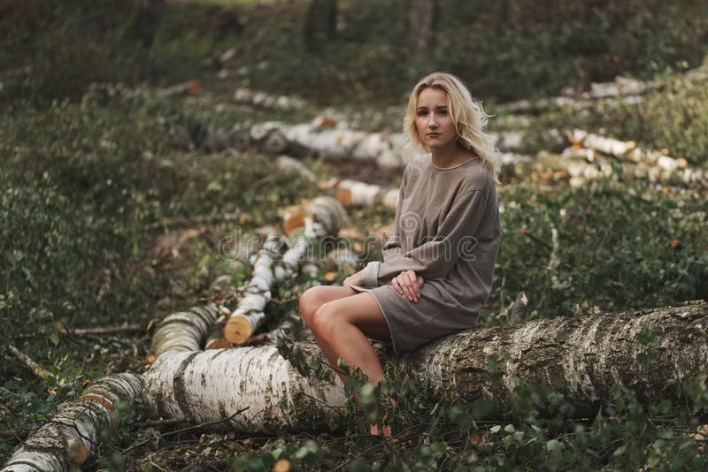 Bella ragazza nella foresta abbattuta fotografie stock libere da diritti