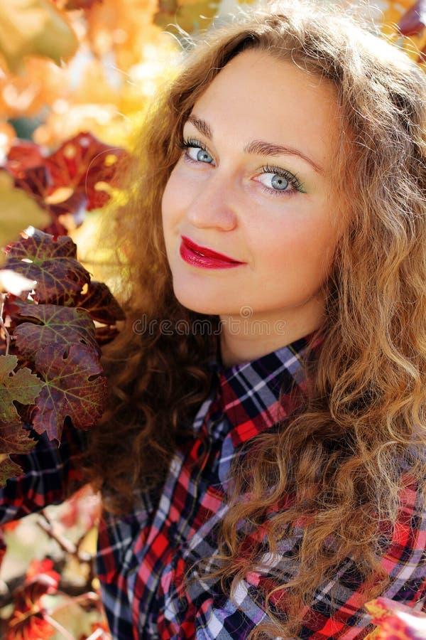 Bella ragazza nella vigna variopinta dell'uva immagine stock libera da diritti