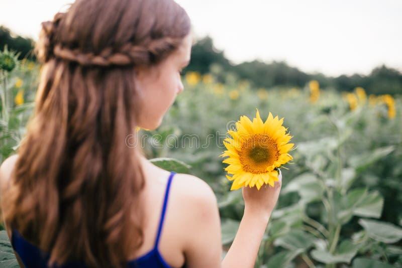 Bella ragazza sul campo con i girasoli in pantaloncini corti ed in una maglia fotografia stock